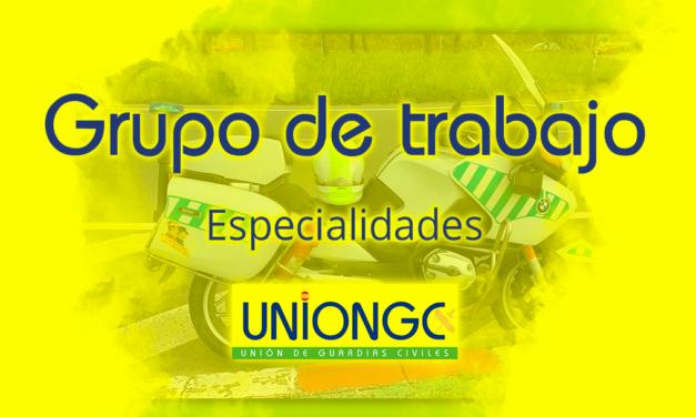 """Resumen Grupo de Trabajo """"Especialidades"""""""