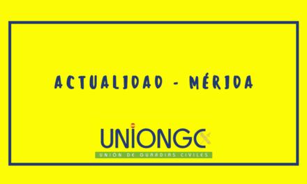 Asuntos Internos detiene a todo el grupo de estupefacientes en Mérida